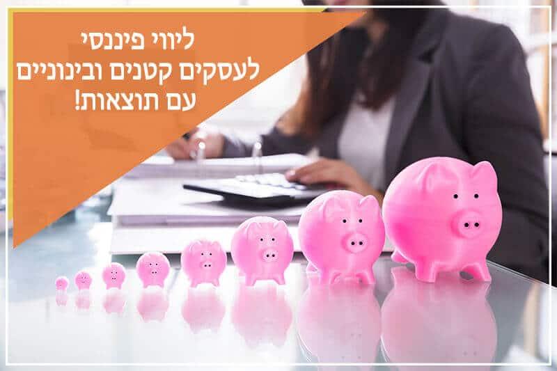 <h1>ליווי פיננסי לעסקים<h1>
