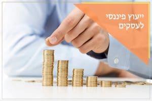 <h1>ייעוץ פיננסי לעסקים<h1>